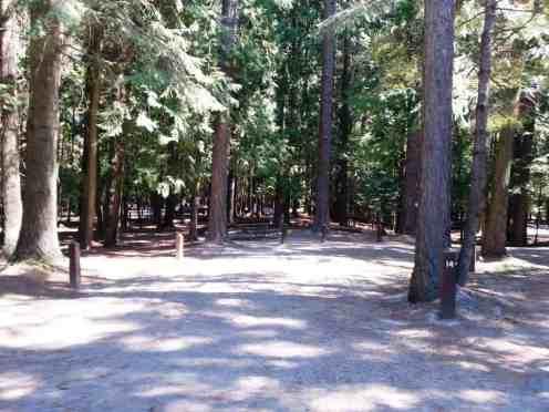 priest-river-mudhole-campground-09