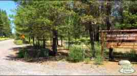 Collier Memorial State Park Campground