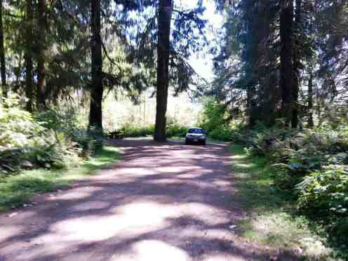 cottonwood-campground-washington-dnr-hoh-3