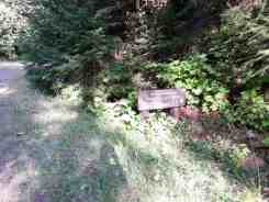 elkhorn-campground-olympic-national-forest-04