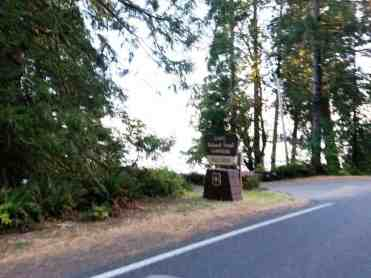 falls-creek-campground-quinault-wa-01