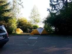 falls-creek-campground-quinault-wa-13