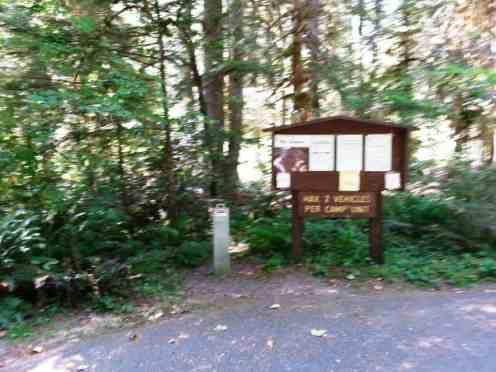 hamma-hamma-campground-wa-04