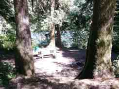 hoh-oxbow-campground-wa-9