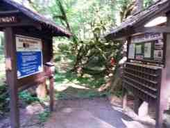 klahowya-campground-wa-0112