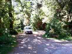 minnie-peterson-campground-forks-wa-04