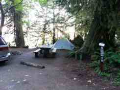 willaby-campground-quinault-wa-08
