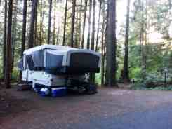 willaby-campground-quinault-wa-14