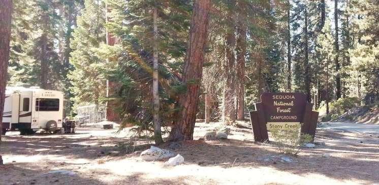 stony-creek-campground-sequoia-10