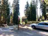 upper-stony-creek-campground-sequoia-1