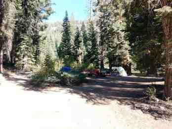 upper-stony-creek-campground-sequoia-6