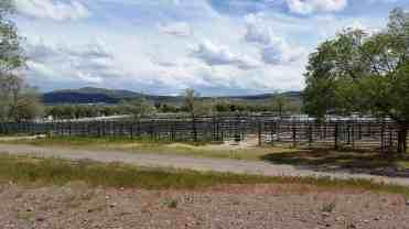 elko-county-fairgrounds-3