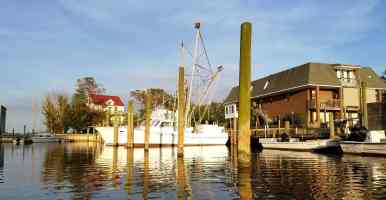 seahaven-marine-rv-park-sneads-ferry-nc-15
