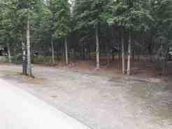 Riley Creek Campground