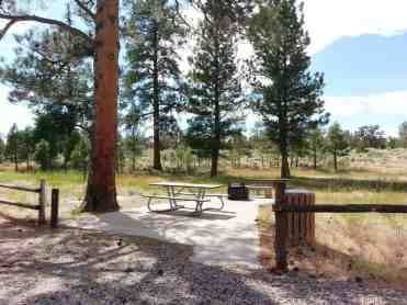 Ponderosa Grove Campground