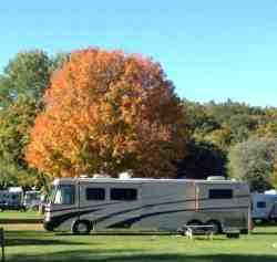 Lone Pine Campsites