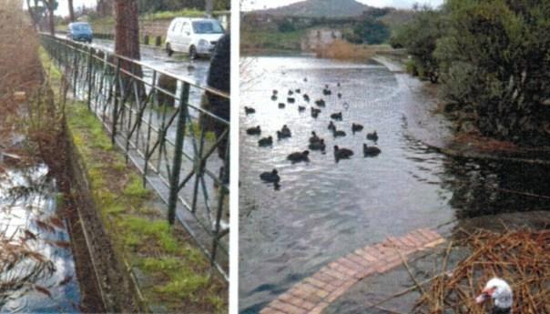 Straripa il lago d'Averno, pericolo per la pubblica incolumità