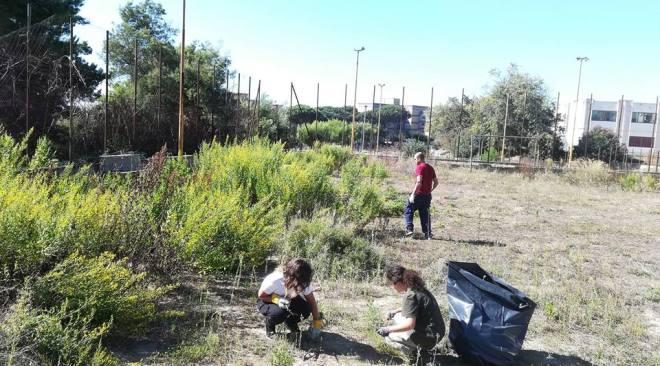 Monterusciello, volontari riqualificano il campetto di via Tosi|Gallery