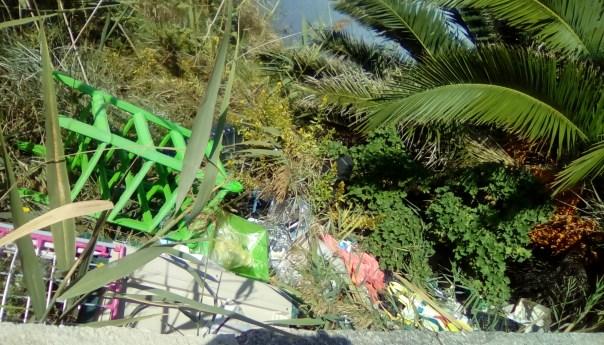 Fusaro, parcheggio e aree verdi tra degrado e abbandono|Gallery