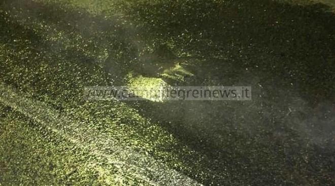 IL CASO/ Si apre il manto stradale e fuoriesce un geyser di acqua bollente|FOTO