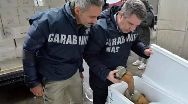 POZZUOLI/ Nas sequestrano carne e prodotti ittici in un ristorante del centro storico
