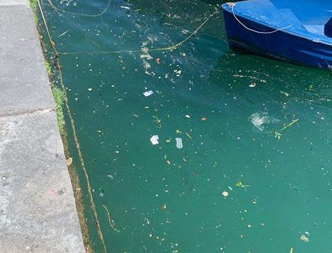 """BAIA/ Mare inquinato nel porto: """"Situazione molto preoccupante"""" - LE FOTO"""