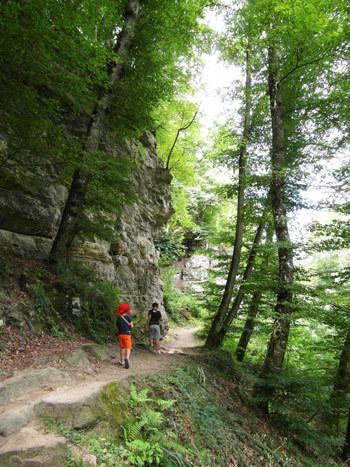 Wandern-in-Bollendorf