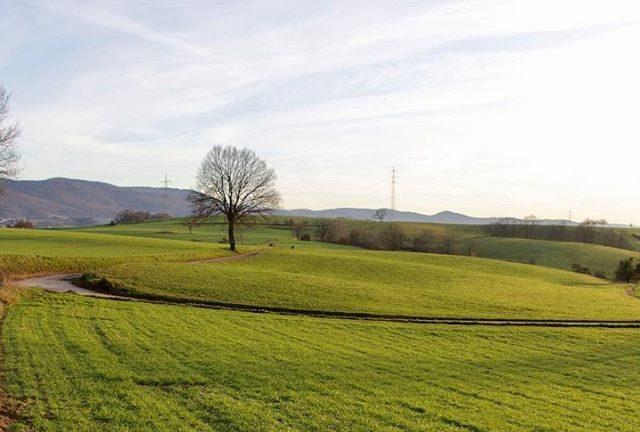 Kunstwanderweg Lindenfels Odenwald Camping