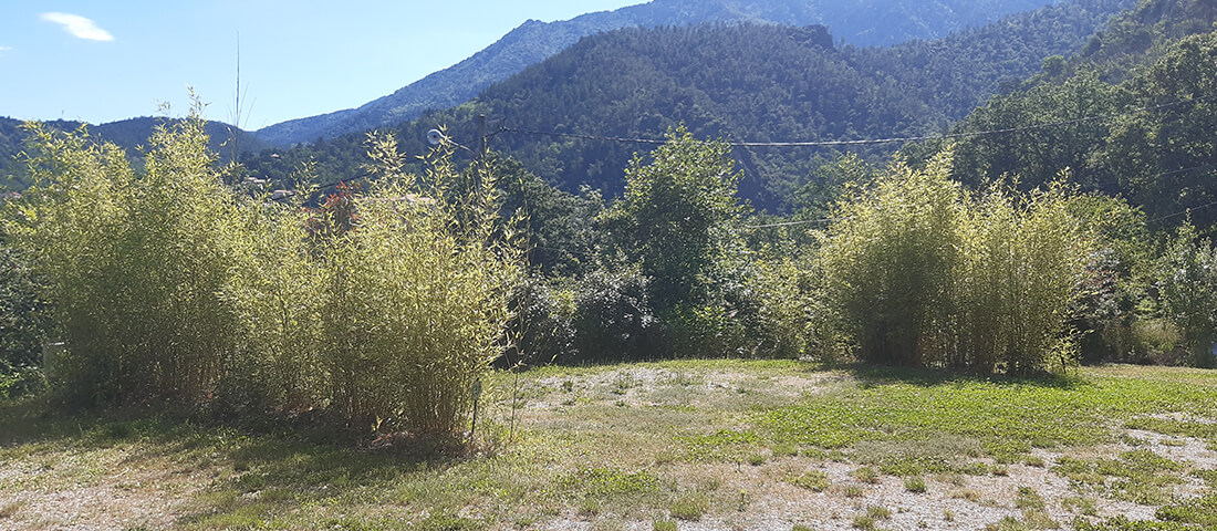 vue_sur_le_pic_de_l'azina_depuis_emplacement_camping_car_camping_les_cerisiers_vernet_les_bains
