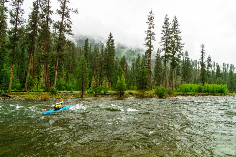 Daphnee Tuzlak on a rainy spring kayak trip down the Selway River in Idaho.