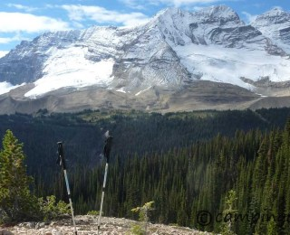 Iceline Trail – Yoho National Park