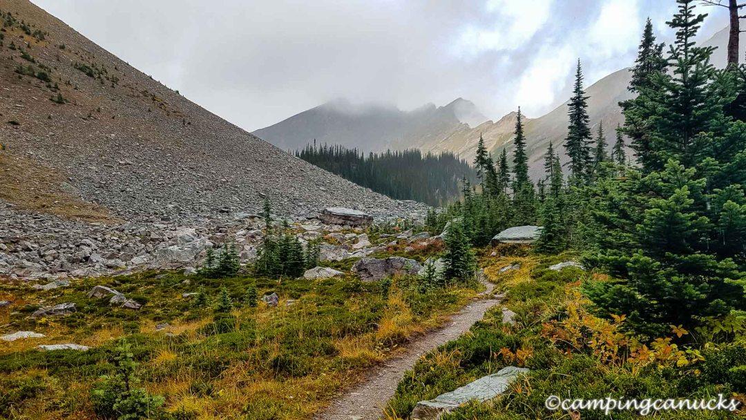 Sub-alpine trail