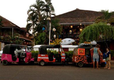 rickshaw-run-6