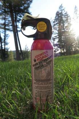 bear spray 2