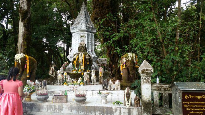Northern Thailand 16