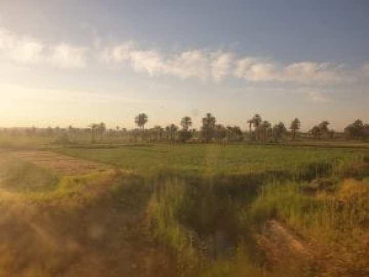 Cairo to Aswan 10