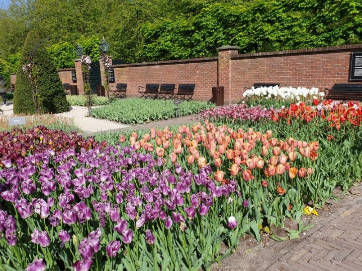 The English Wall Garden close to the Maze at Keukenhof.