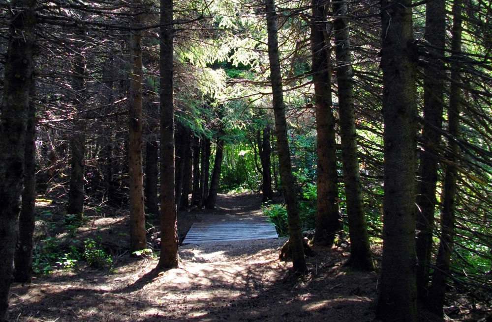 Ruisseau des enfants trail at Camping Griffon