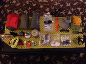 I try to keep all of my backpacking gear organized.  I lay it out like this at home before heading out, and then again each night of my hike.