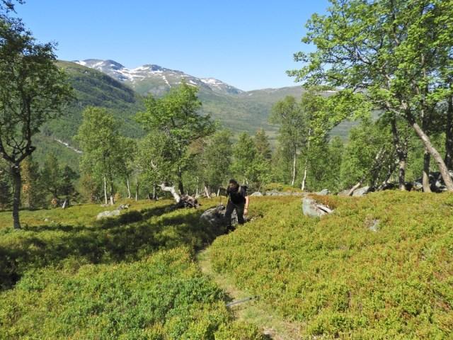 Trollheimen trekking Snota 1