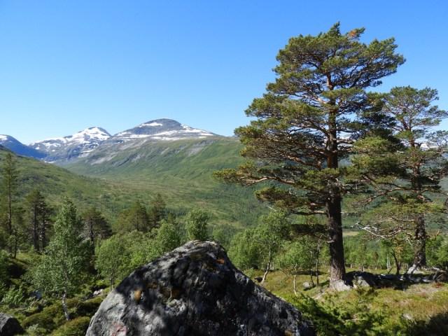 trekking Snota
