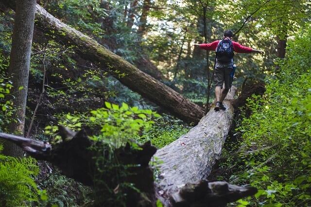 Thru-Hiking Tips