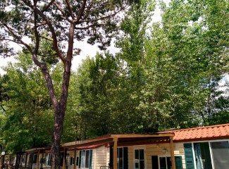 Piazzole Tende Camping Verde Mare