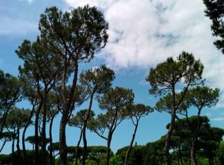 Piazzole Camper Camping Verde Mare