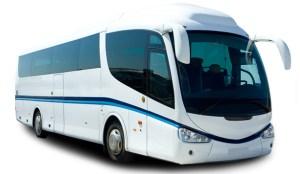 ancona-noleggio-bus-lollibus-autobus-con-conducente-sconto20-19398-wdettaglio1