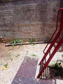 Campobello, Atto vandalico nella scuola dell'infanzia Collodi