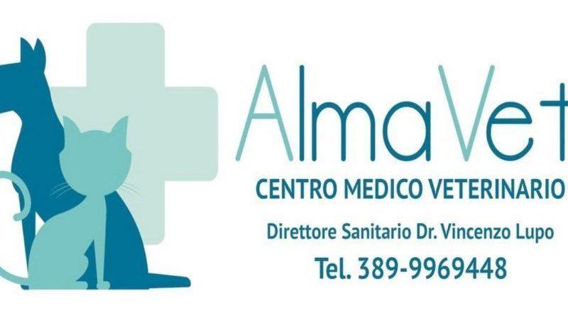 """Campobello. Si inaugura oggi """"Il Centro Medico Veterinario"""""""