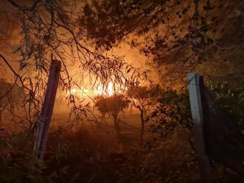 incendio-Tre-Fontane-12-580x435