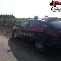 Trapani. Depredata azienda agricola: arrestati 2 cittadini romeni