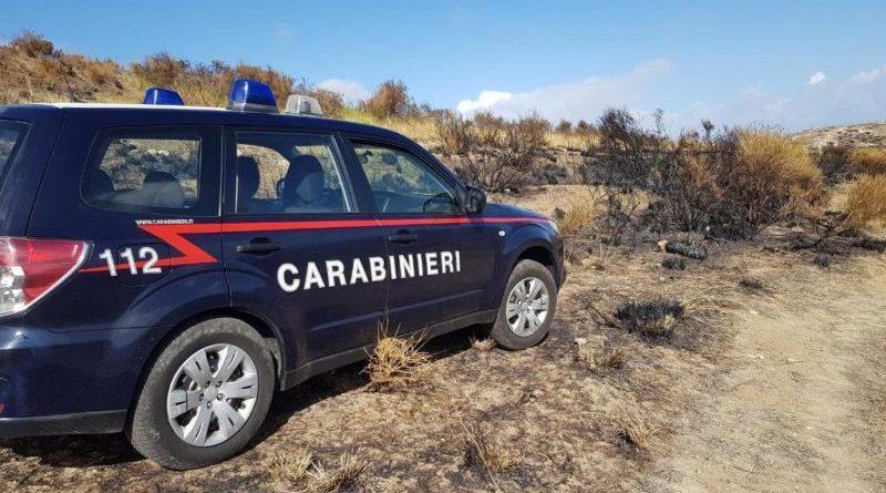 Palermo. Incendio boschivo a Ciminna: convalidato l'arresto del 61enne